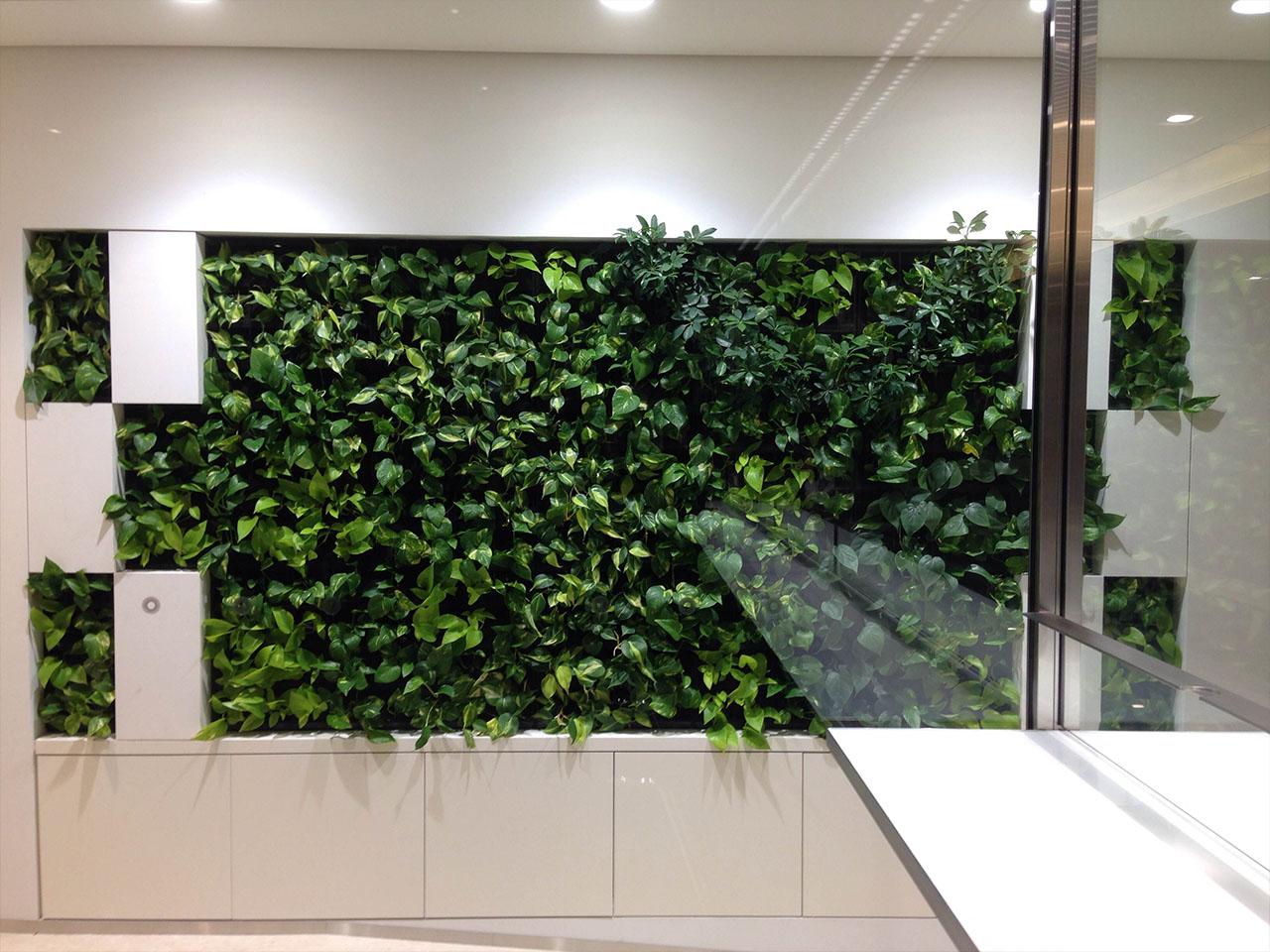 広さを錯覚させる壁面緑化