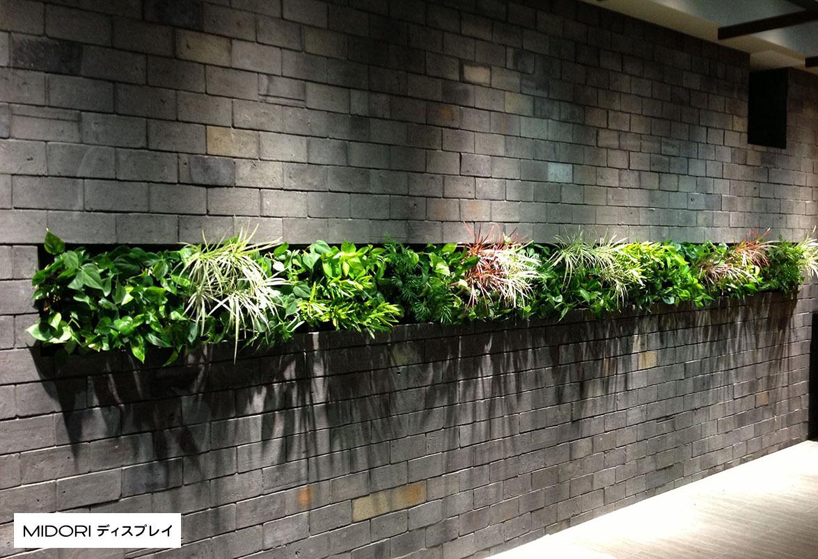 レンガと組み合わせた壁面緑化