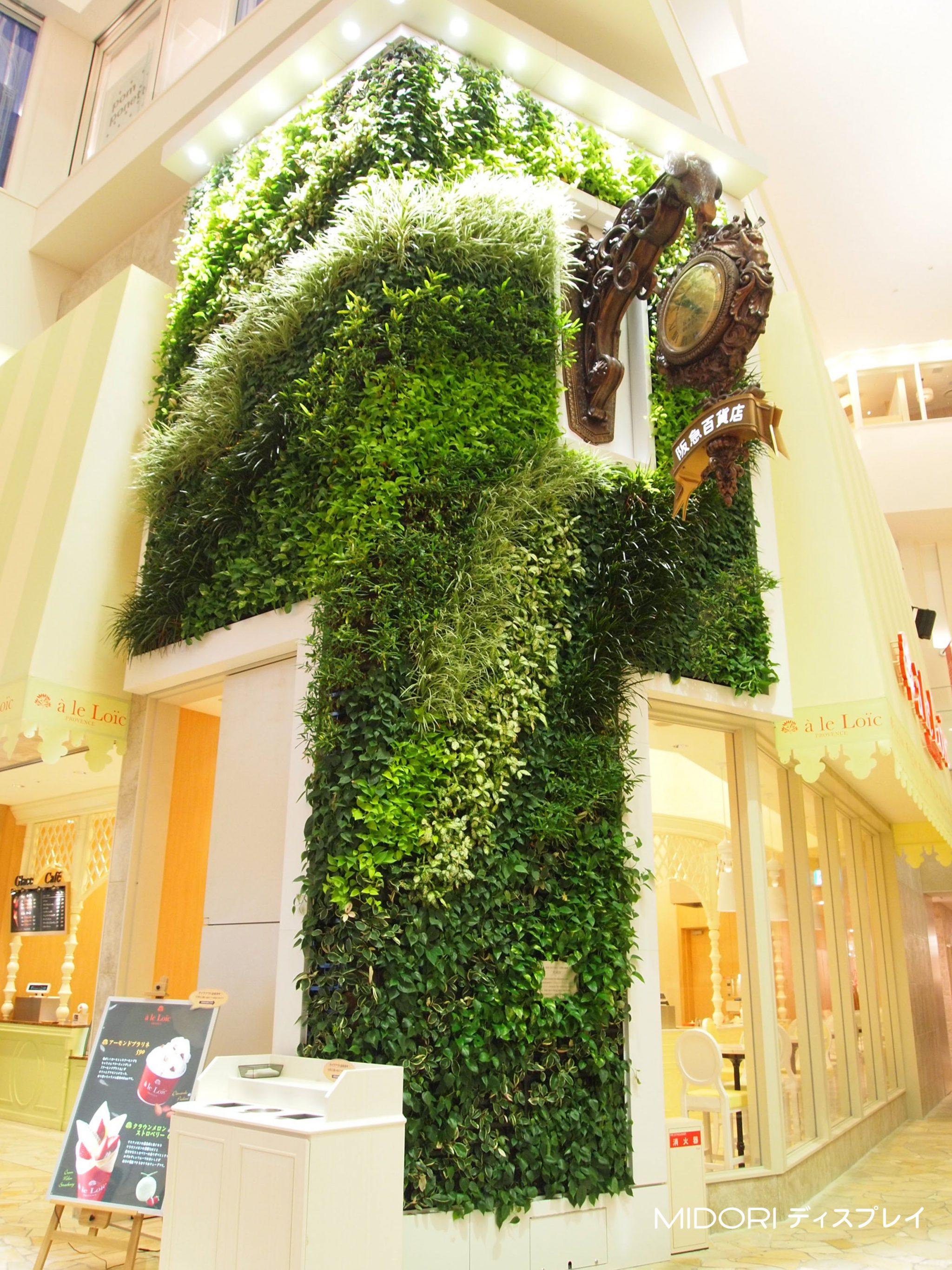 百貨店屋内への壁面緑化
