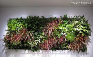 アイポイントを作りデザイン性を高めた壁面緑化