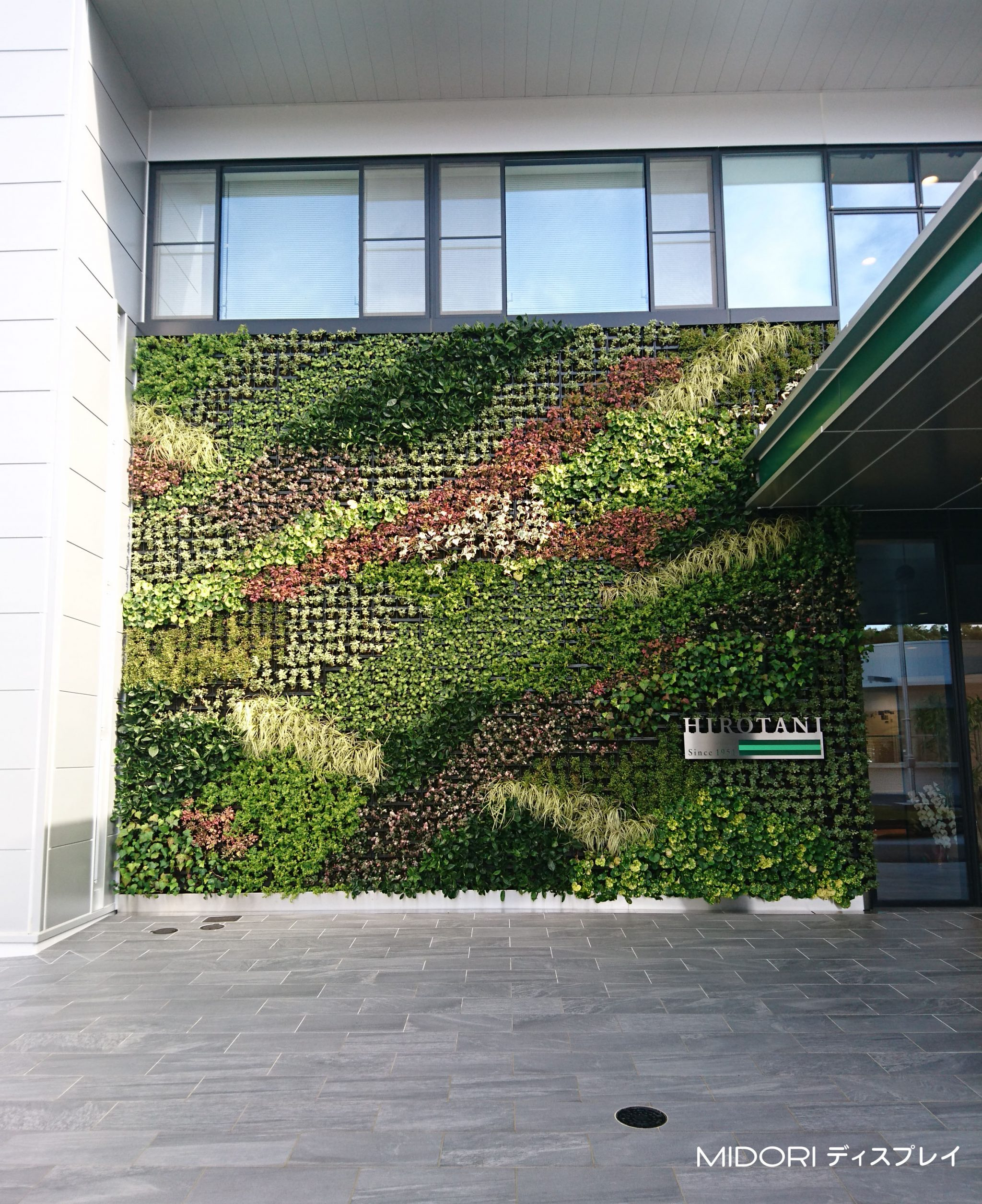 季節の移ろいを感じる壁面緑化