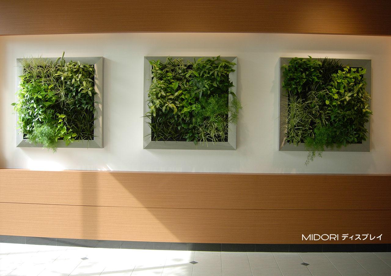 無難な通路を彩る壁面緑化