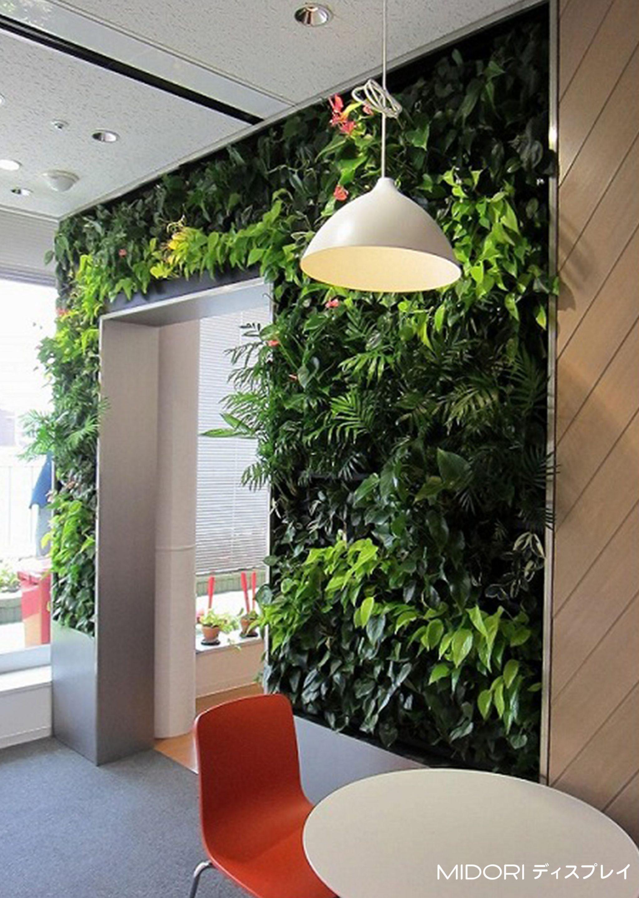 緑をくぐる壁面緑化