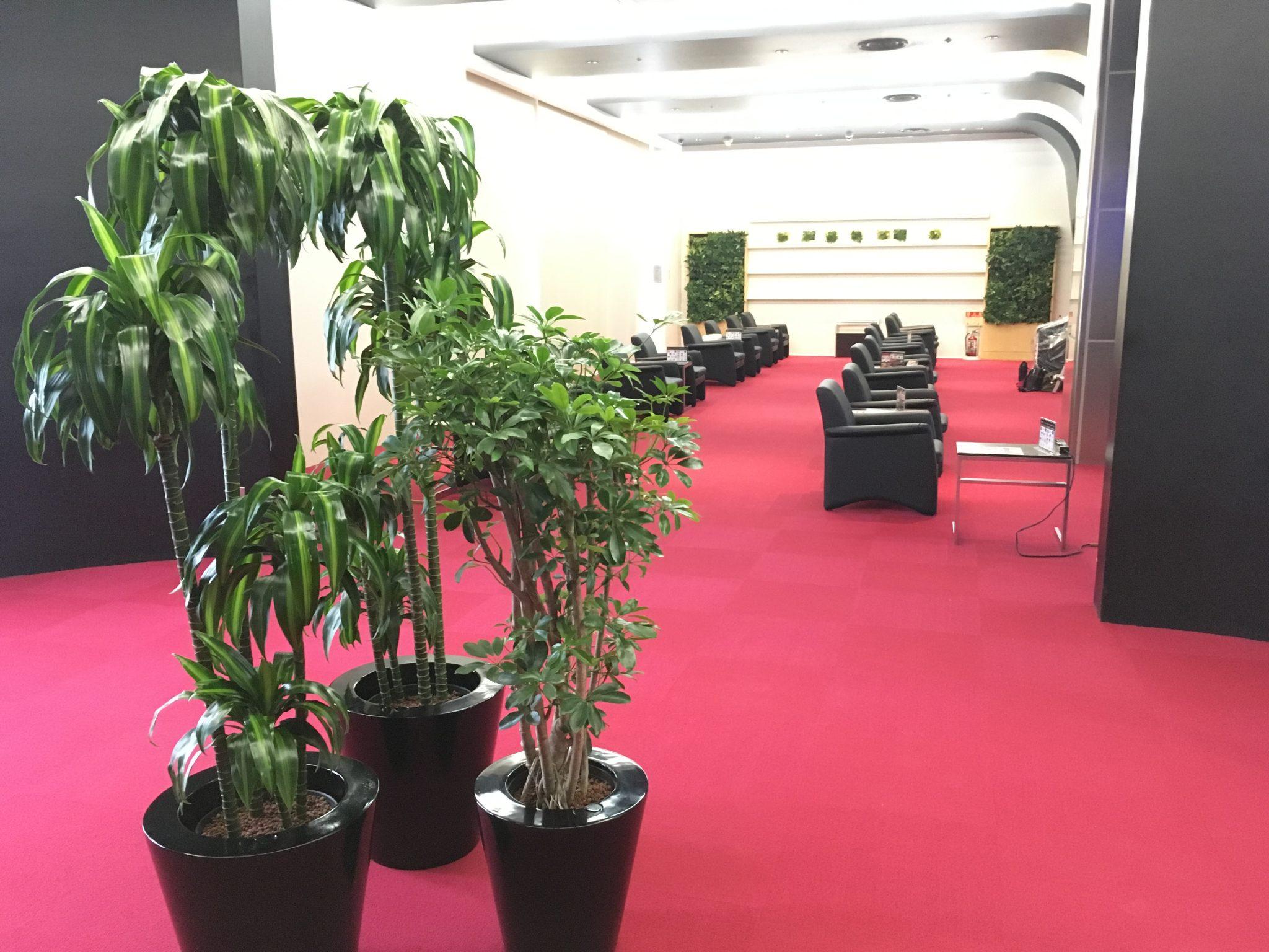 アミューズメント施設への観葉植物レンタル