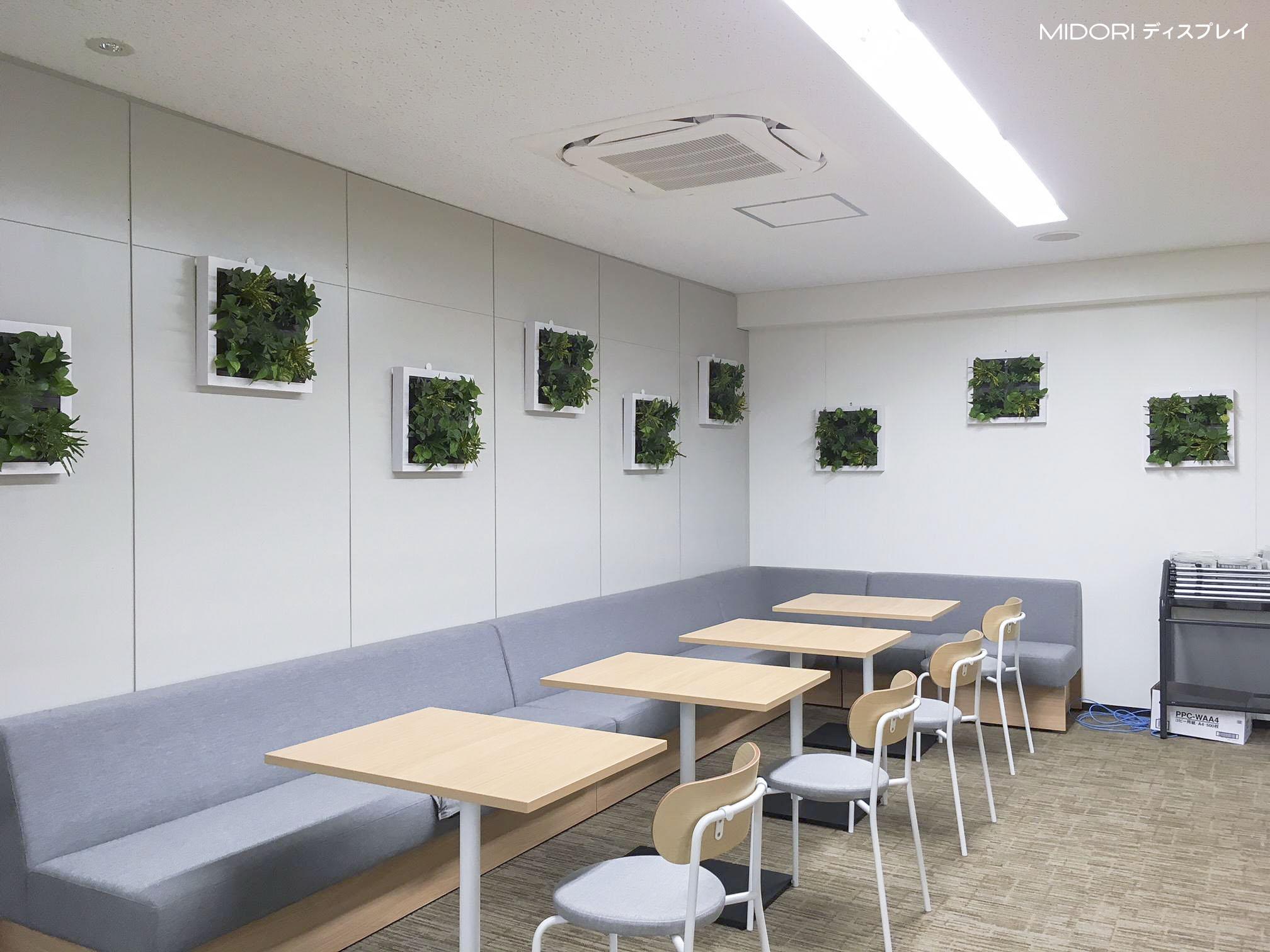 大阪市内オフィスフロアに壁面緑化