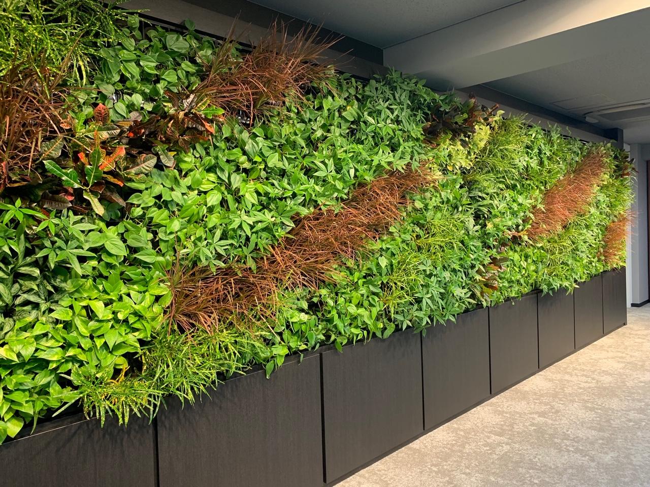 壁面緑化:花のかべ施工事例を更新しております